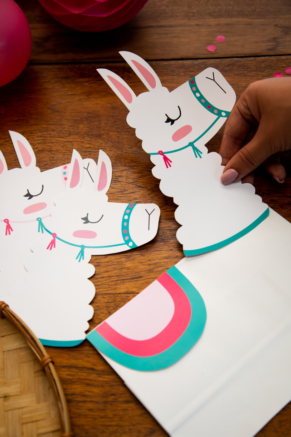 Llama theme birthday party ideas